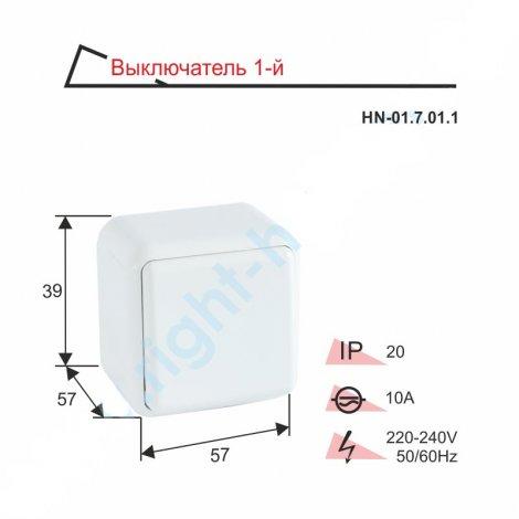 Выключатель RIGHT HAUSEN ASTRA NV одинарный наружный HN-01.7.01.1 белый