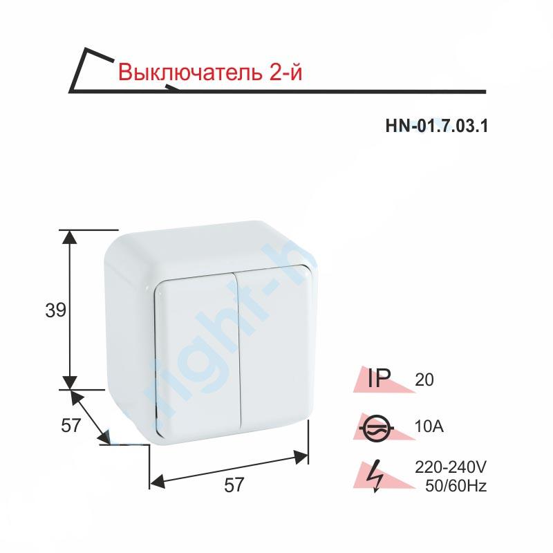 Выключатель RIGHT HAUSEN ASTRA NV двойной наружный HN-01.7.03.1 белый