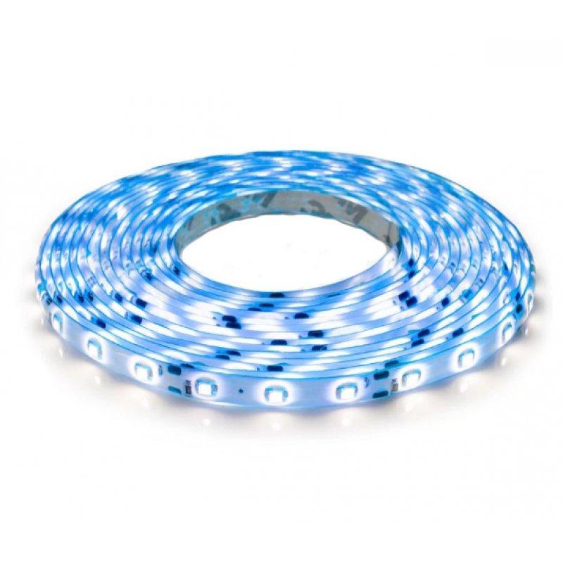 Светодиодная лента OEM ST-12-2835-60-B-65 синяя герметичная 1м